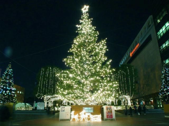 xmas decoration led starry string lights daylight rf control waterproof usb powered - Usb Powered Christmas Lights