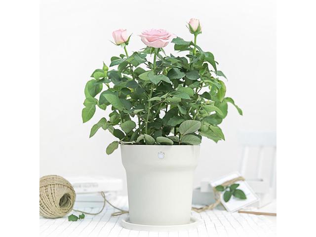 Xiaomi Mi Smart Flowerpot Plant Pot Digital Plants Soil Water Light